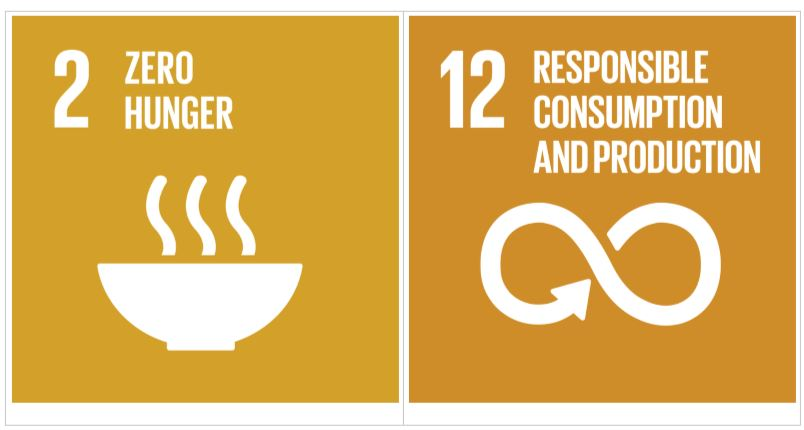 SDG and Hunger