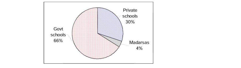 Govt  schools  Private  schools  Madarsas  4%