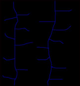 Trellis Drainage Pattern